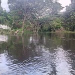 CDC continues flood relief efforts in Regions 7 and 8, as more heavy rainfall threatens
