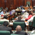Broadcast Amendment Bill passed after fiery debate on PSA times and Frequencies for Family and Friends