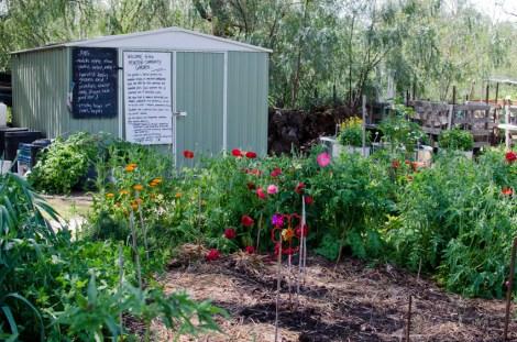 Festival of Gardens 2016 and vibtrant community garden on show