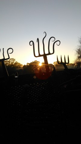 Sunset and forks Antares
