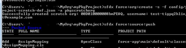 SalesforceDX SFDX Scratch org details