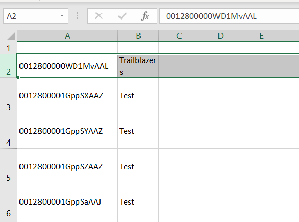 Store data into excel