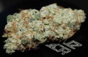 gorilla-glue-#4-Top-Weed-Strains