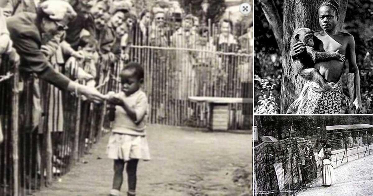 Όταν στην Ευρώπη κρατούσαν μέσα σε κλουβιά, σε ζωολογικούς κήπους αιχμαλώτους μαύρους