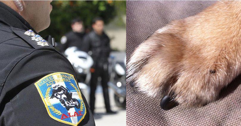 Αστυνομικός της ΔΙΑΣ πυροβόλησε σκύλο που του γάβγισε