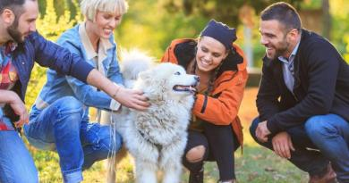 Dogs more apt to bite anxious, neurotic people 4