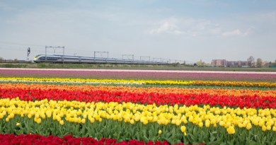 Eurostar to launch Amsterdam service in April 1