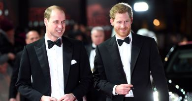 Prince Harry Asked Prince William to Be His Best Man at the Royal Wedding 2