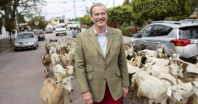 Mexican Prez Vicente Fox Taught Us Some 'Useful' Spanish Phrases for Traveling in Mexico 4