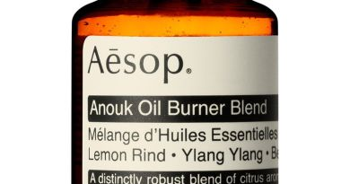 Aesop's Brass Oil Burner Is a Piece of Art That Makes Your Home Smell Better 4