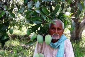 राष्ट्रपति पुरस्कारको छनौटमा सप्तरीका आँप कृषक अयोधी