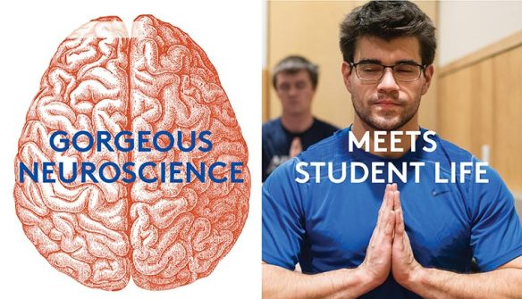 Illustration of a brain and photograph of student meditating