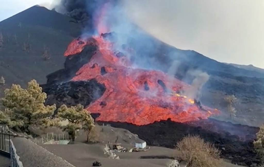 Drones Drop Food, Water For Dogs Stranded Due To Volcano In Spain