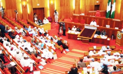 Banditry: Senate approves N10bn intervention to assist displaced persons in Zamfara