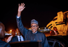 Bulama mobilises support for Buhari