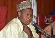 I have no problem with minimum wage implementation – Masari