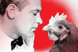 The CDC wants you to stop kissing chickens