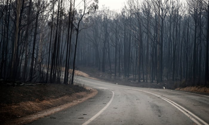 Police contradict online exaggerated claims about arson's role in Australian bushfires