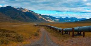 UN urges Canada to halt Trans Mountain pipeline construction