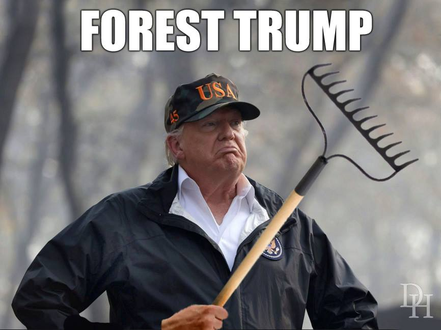 """Trump once again blames CA's wildfires on unclean forest floors: """"You've got to clean your floors."""""""