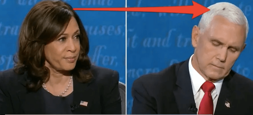 Fact Checking the Vice Presidential Debate