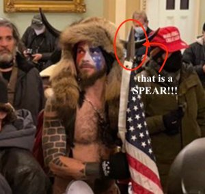 Capitol Rioter Seen in Horned Hat, Carrying Spear Arrested: US Attorney