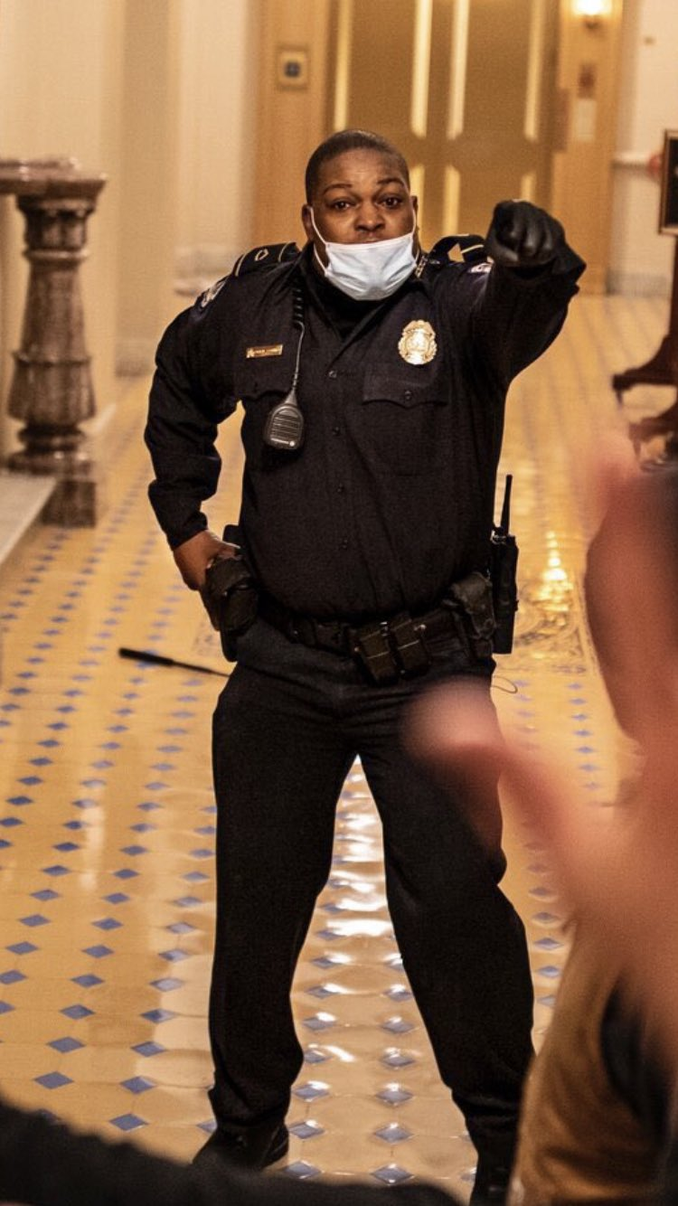 Black officer seen risking his life to lead Capitol mob away from Senate chamber hailed as a hero