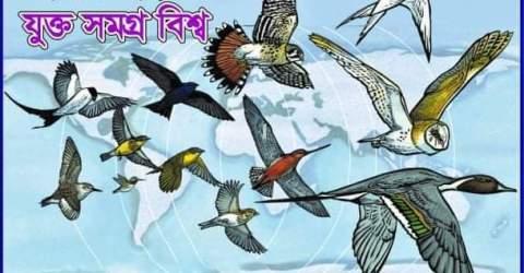 'Birds connect our world' স্লোগানে আজ পালিত হয়েছে বিশ্ব পরিযায়ী পাখি দিবস-২০২০