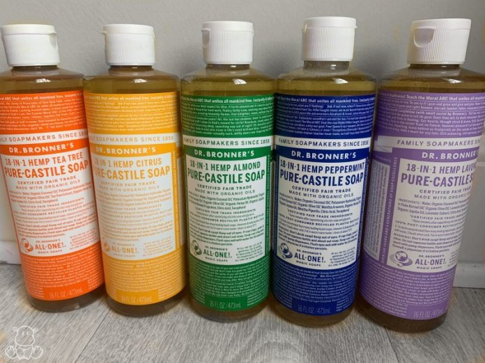 castile soap get rid of ants