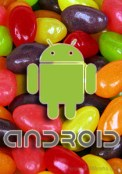 Google is planning to launch Android 5.0 jelly bean in Q2