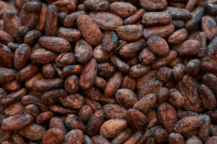 Shippers halt cocoa exports as price drops 50%