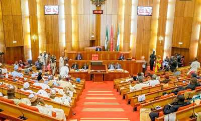 Senate urged to reject ex-IGP Smith as PSC chairman