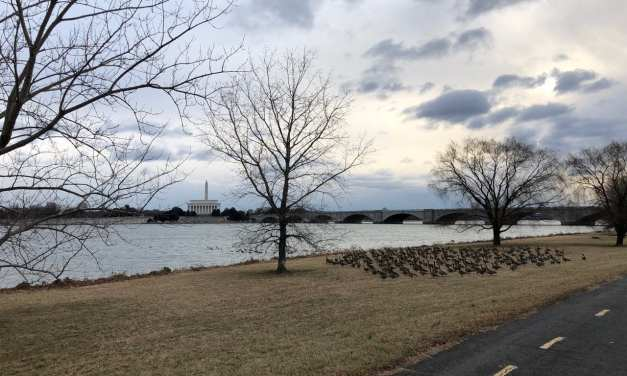 The Best Running Routes in Arlington & Washington DC