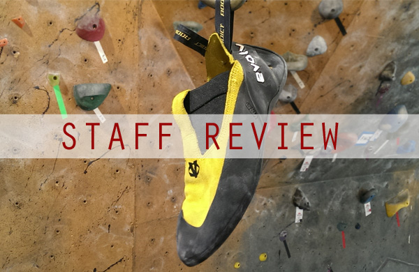 staff-review