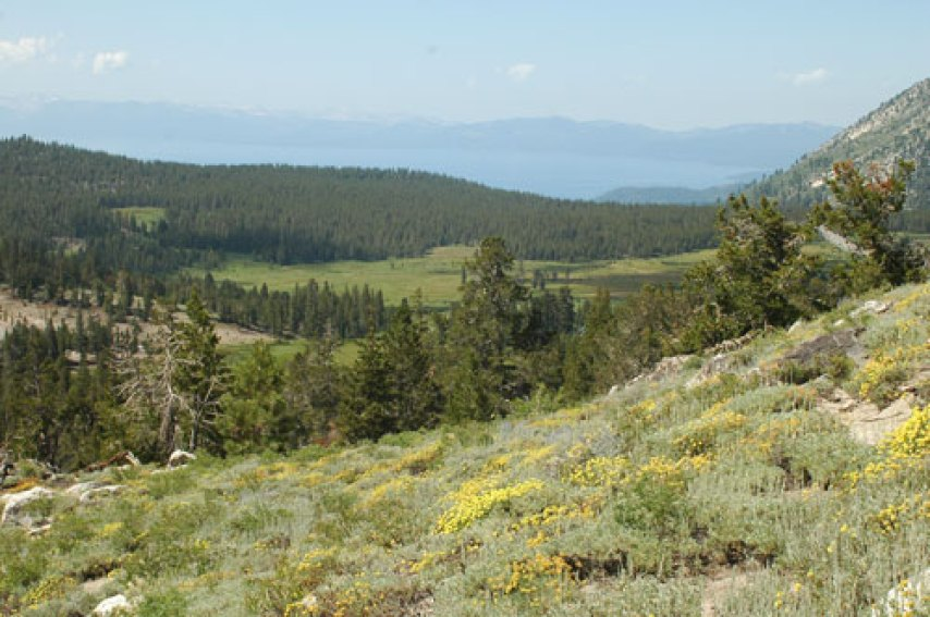 Views from the Mt. Rose summit Trail, Nevada