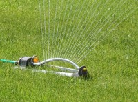 landscape watering in Reno, Truckee Meadows, Nevada