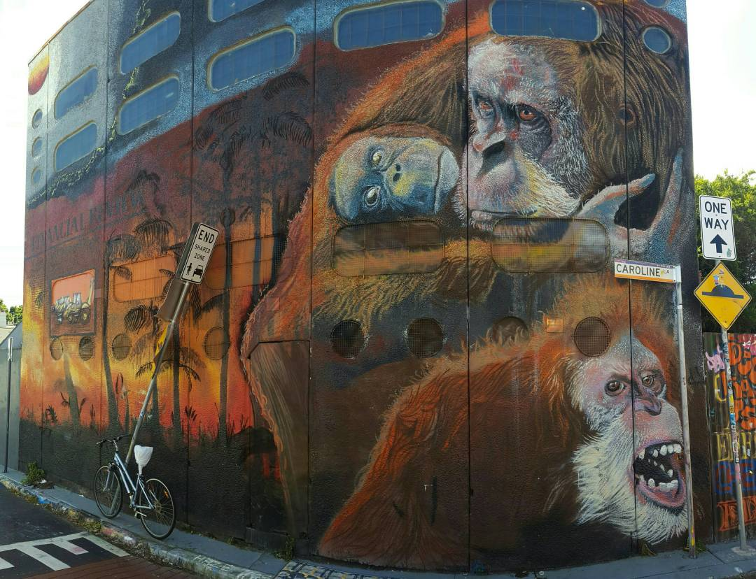 Graffiti mural orangutans St Peters