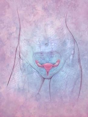 Soy and Cancer. Eating soy foods may reduce your risk of Endometrial Cancer