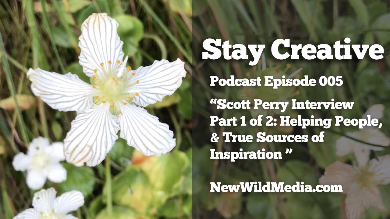Stay Creative Project Scott Perry 1 help others inspiration SCP005 1280