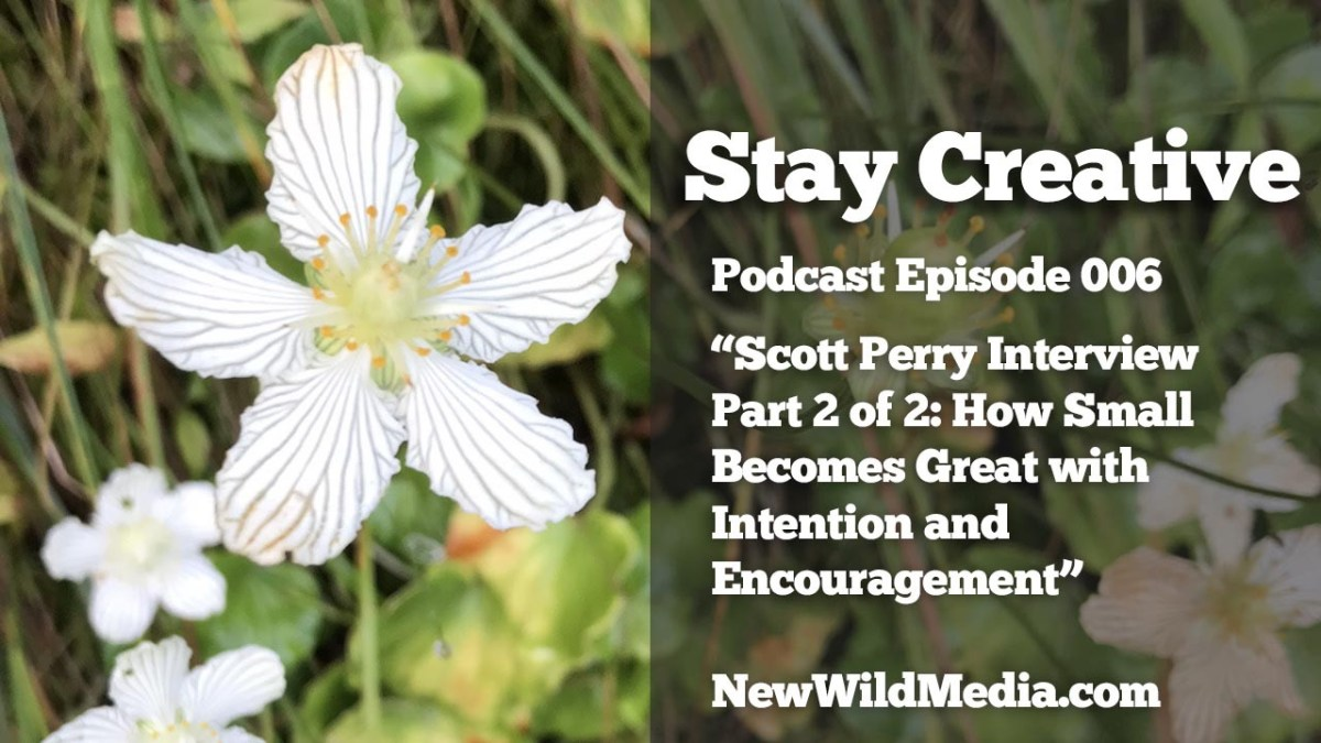 Stay Creative Project Scott Perry Part 2of2 small becomes great SCP006 1280