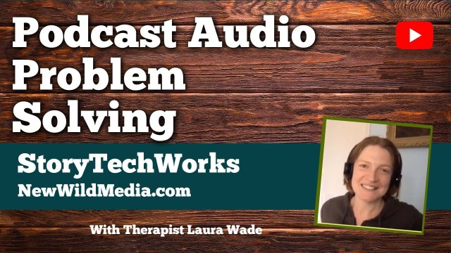 STL Podcast Audio Problem Solving Laura Wade