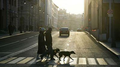 КС не принял жалобу на ПДД, обязывающие уступать дорогу пешеходам