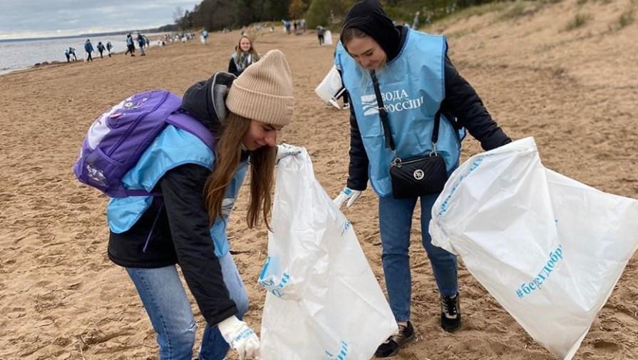 Волонтёры очистили Комаровский берег Финского залива от мусора