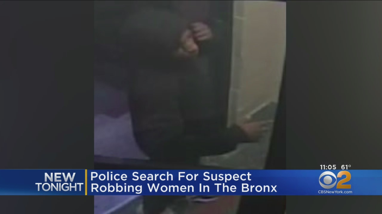 Mugger Targeting Young Women In The Bronx, Police Say