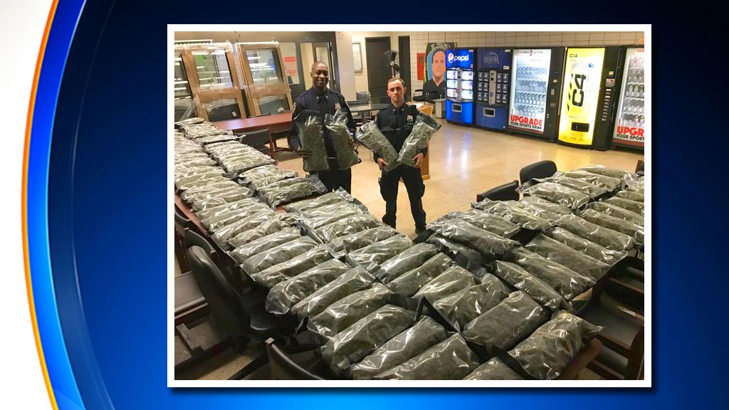 Charges Expected To Be Dropped After NYPD Mistakes 106 Pounds Of Hemp For Illegal Marijuana