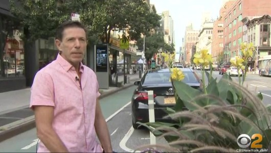 Each Of Us Can Make A Difference: Man Doing Everything He Can To Help Beautify Part Of Manhattan