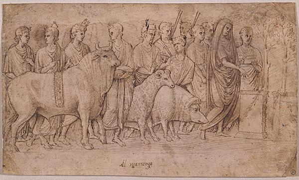 Italian, Paduan School, 15th Century, Study after the Suovetaurilia Relief. Photo Michael Miller.
