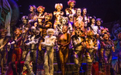 Cats Film Release Date Set