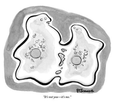 benjamin-schwartz-it-s-not-you-it-s-me-new-yorker-cartoon