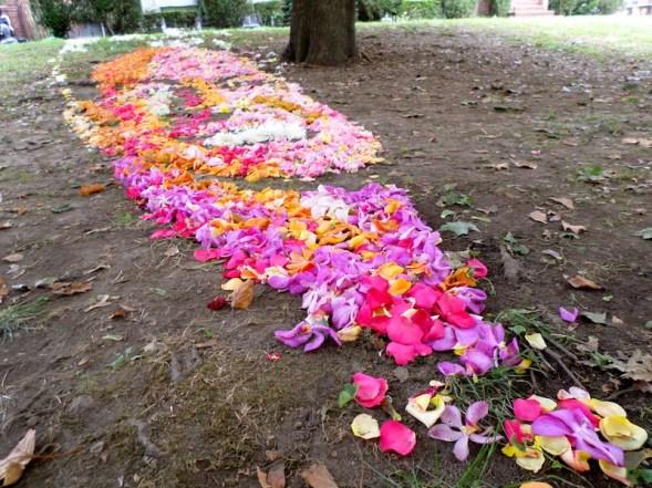flowerrichfeynman
